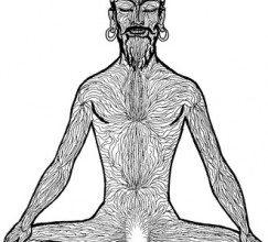 Йога теней как подход к изучению хатха - йоги