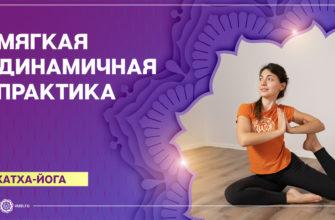 Хатха-йога. Мягкая динамичная практика. Алла Долгова