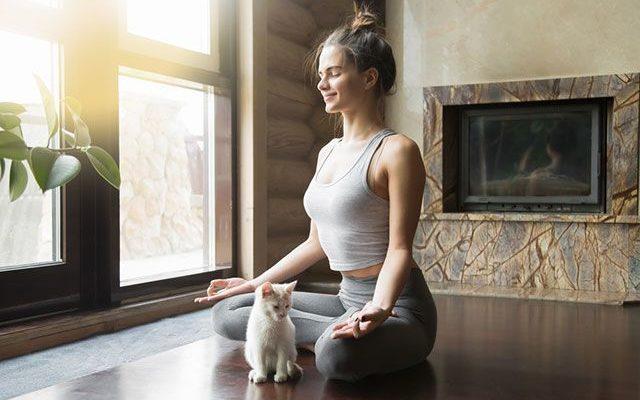 12 видов йоги. Какую выбрать?   Здоровая жизнь   Здоровье   Аргументы и Факты