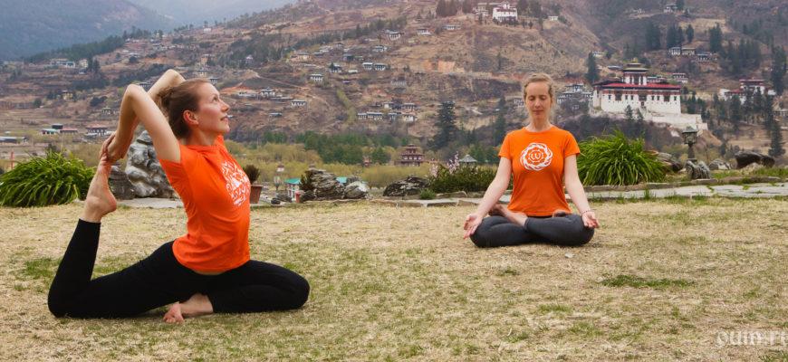 Виды йоги. Современные разновидности йоги. Стили йоги.