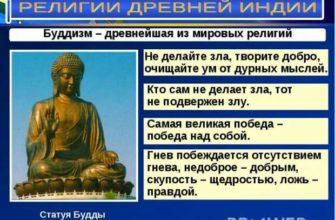 Колеса для йоги в Москве: 448-товаров: бесплатная доставка, скидка-55% [перейти]
