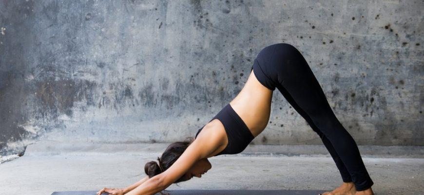 Йога для начинающих в домашних условиях - от А до Я