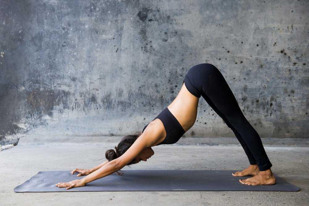 Йога для новичка: правила выполнения упражнений и базовые асаны –