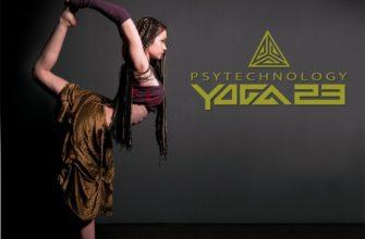 Йога 23. Современная методическая система йоги