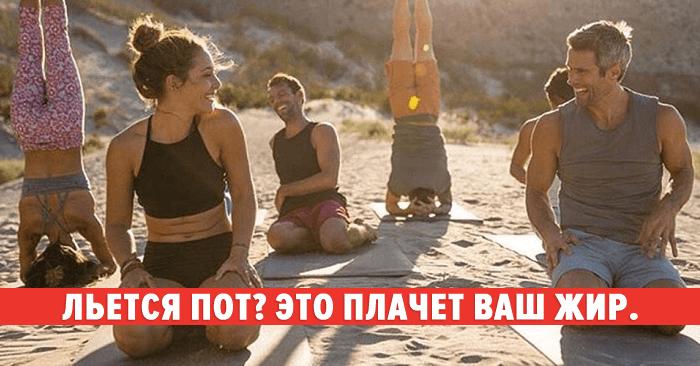 Цитаты о йоге | Citaty.info: цитаты на все случаи жизни